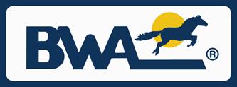 Logo BWA italia